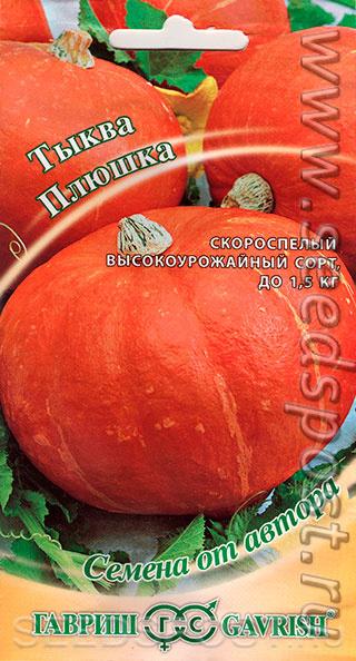 Тыква крошка: описание, характеристики, фото и применение плодов + особенности посева и выращивания, отзывы огородников