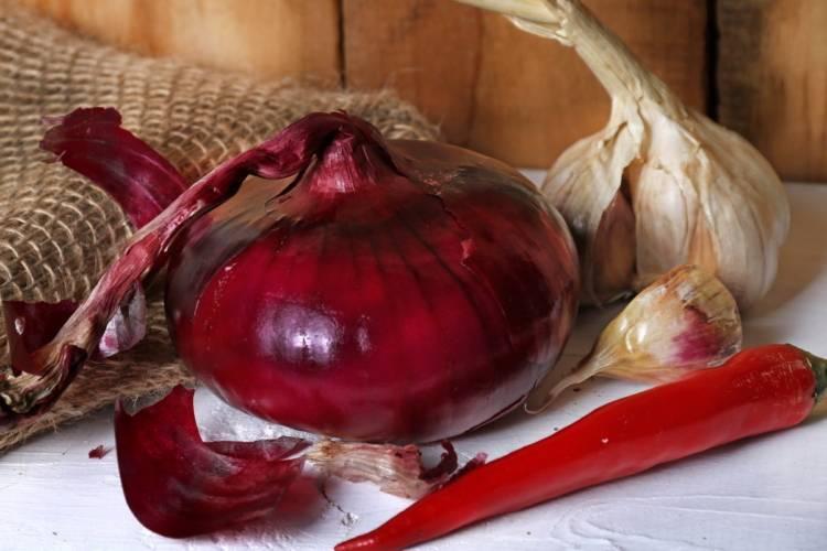 Ялтинский лук: описание сорта, посадка и выращивание красного лука
