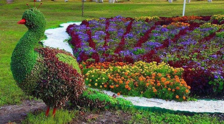 Клумбы и цветники на даче своими руками - фото примеров
