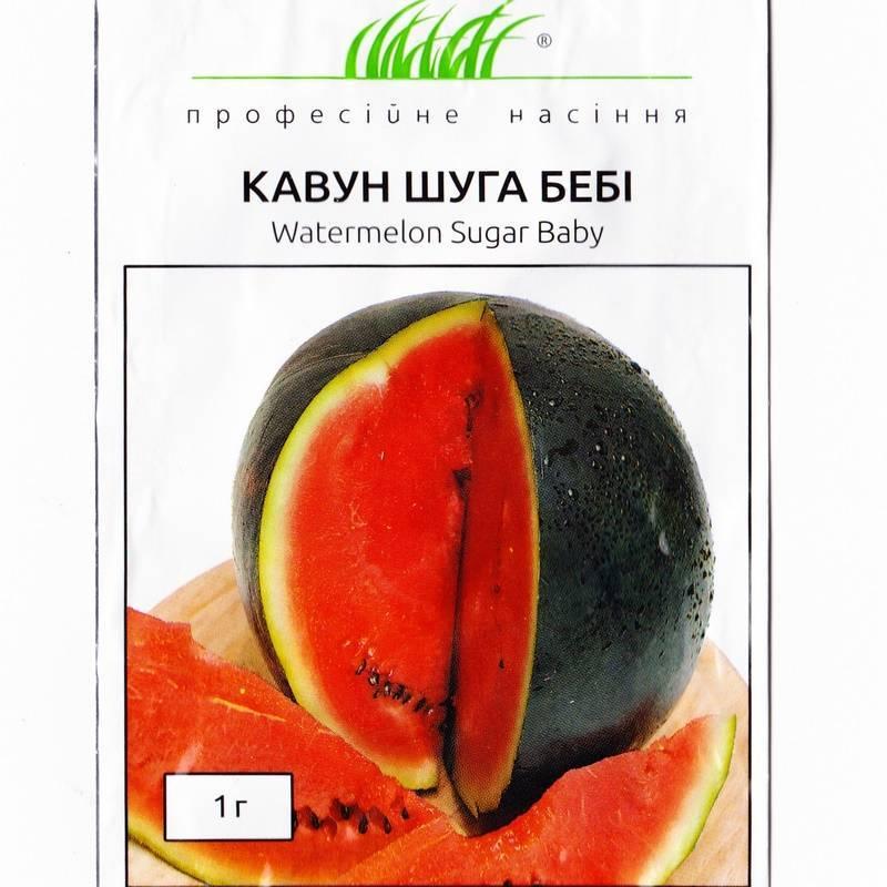 Арбуз шуга бейби: выращивание и уход