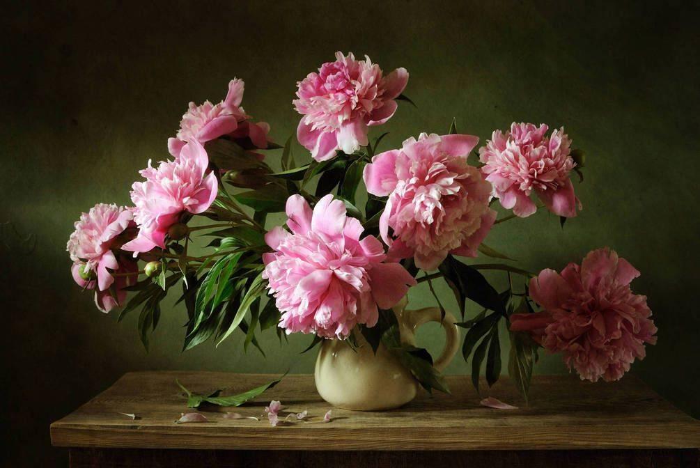 Как сохранить срезанные цветы? |