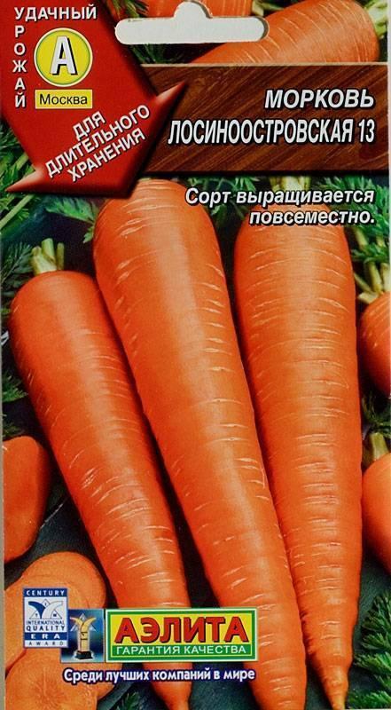 Морковь лосиноостровская 13: отзывы, выращивание, описание + фото