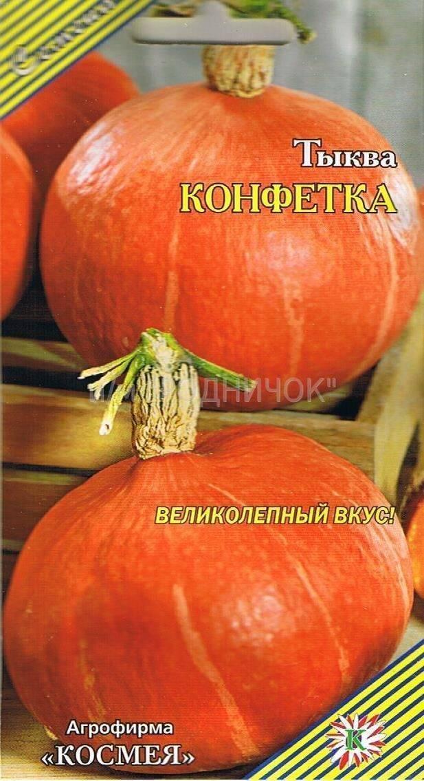 Все о тыкве Конфетка (карамелька): описание, выращивание и уход