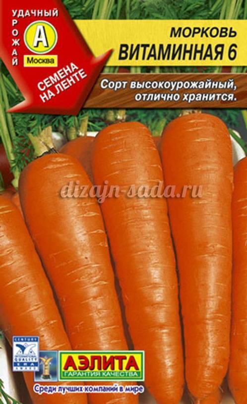 Морковь - раннеспелая и позднеспелая, сорта | россельхоз.рф