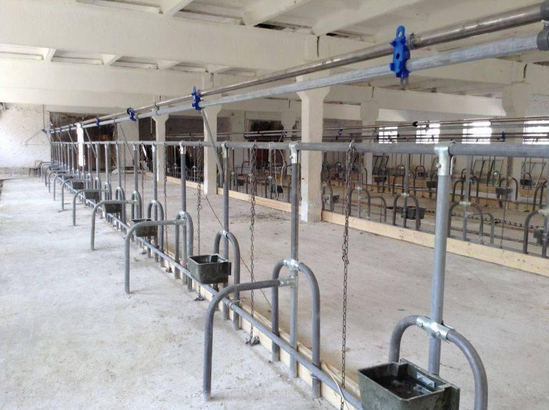 Кормушки и поилки для коров – оборудование для крс своими руками 2020