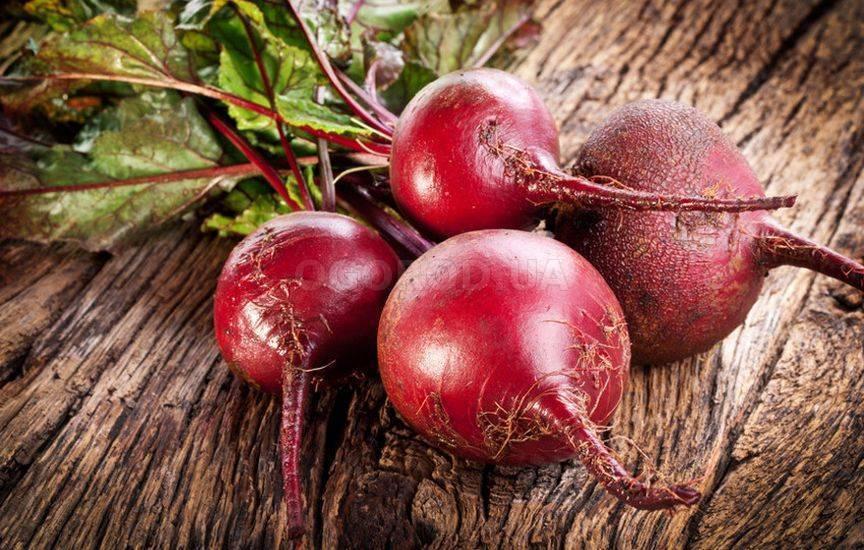 Какие семена свеклы лучше подходят для открытого грунта?