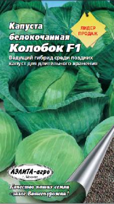 Кольраби: выращивание и уход за капустой, правила получения хорошего урожая