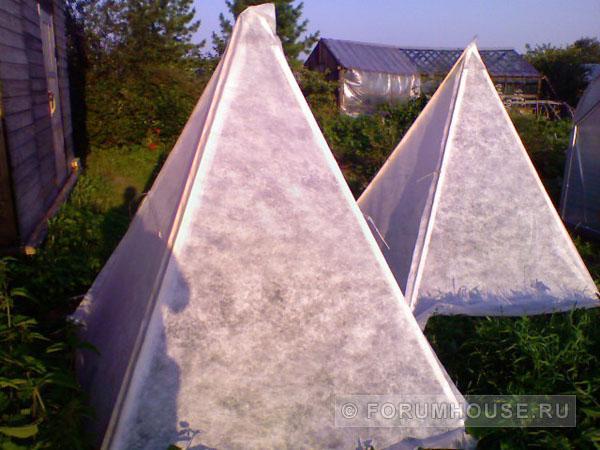 Самодельные вертикальные грядки для огурцов: виды, фото