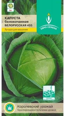 Описание белорусского сорта капусты: как вырастить на своем участке