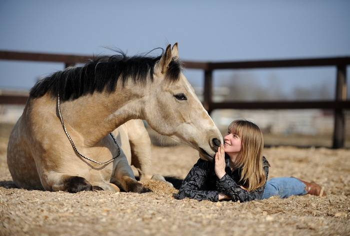 Как наладить контакт с лошадью, используя приемы естественного обучения