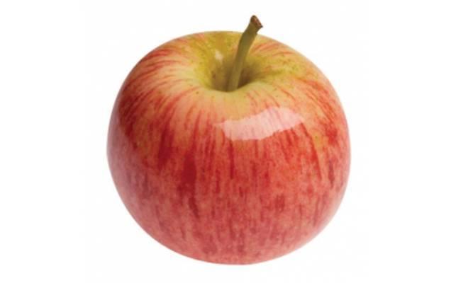 Характеристика и описание яблони «гала»