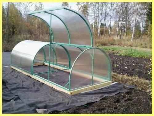 Парник (112 фото): выбираем для рассады мини-парник «улитка», «кабачок» и «огурчик». что такое садовый парник и как выращивать там перцы?