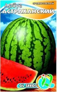 Все об арбузе Астраханском: агротехника, описание сорта, выращивание