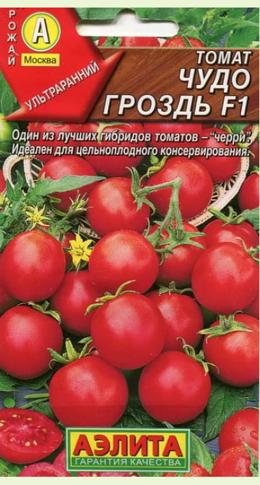 """Томат """"чудо сада"""": описание сорта и фото, устойчивость к болезням"""