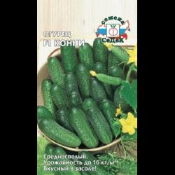 Сорт огурцов конни — описание и правила выращивания