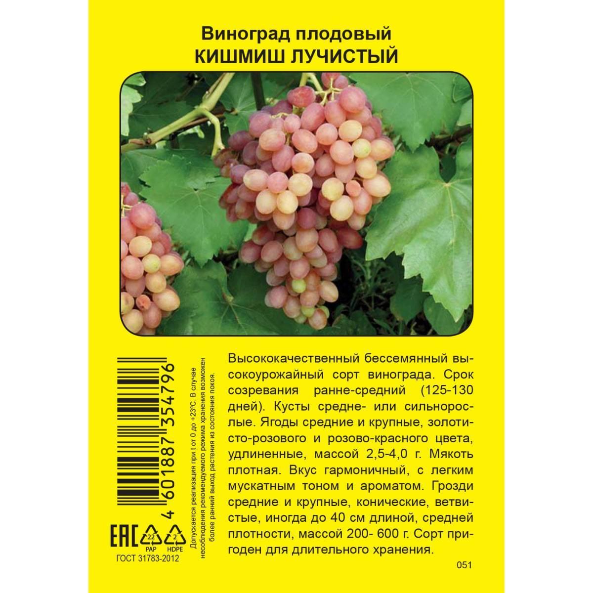 Ростовская область (виноградарство)