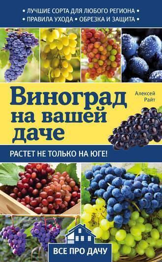 Почему сохнут завязи винограда. почему виноград не плодоносит — что делать в этом случае? слишком активно растет надземная масса куста в ущерб урожаю