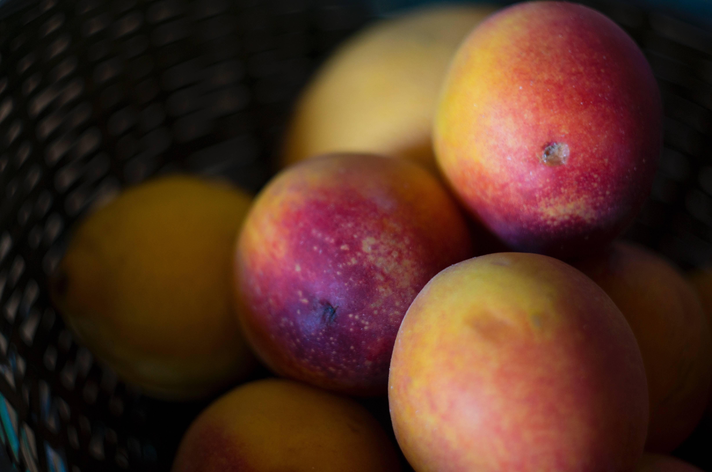 Гибрид сливы и персика сливовый нектарин