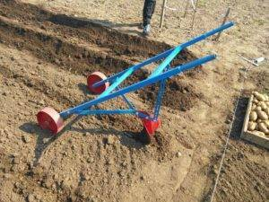 Приспособление для посадки картошки вручную