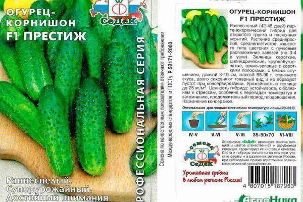 Раннеспелый гибрид огурцов «престиж f1»: фото, видео, описание, посадка, характеристика, урожайность, отзывы