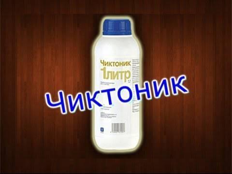 """""""чиктоник"""": инструкция по применению, отзывы"""