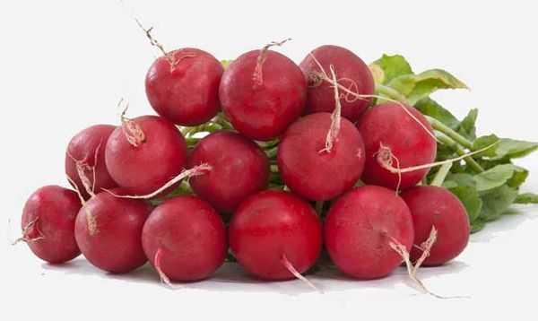 Редис: что это такое, фрукт или овощ, как выглядит, сколько весит один, ботаническое описание, тип плода, формула цветка, место происхождения культурного растения