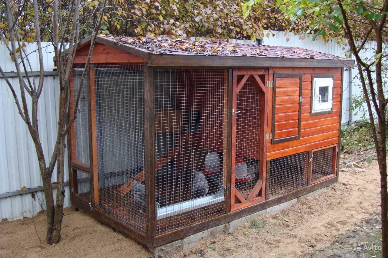 О зимних курятниках своими руками на 10 кур: теплые курятники для куриц