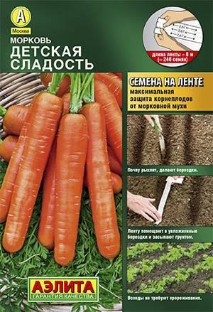 15 лучших сортов моркови для свежего употребления и хранения