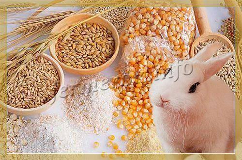Комбикорм для кроликов: состав, приготовление своими руками, особенности кормления