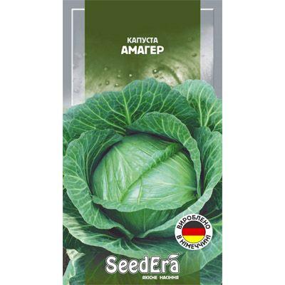 Как получить хороший урожай капусты амагер? подробное описание сорта и правила выращивания, включая схему посадки