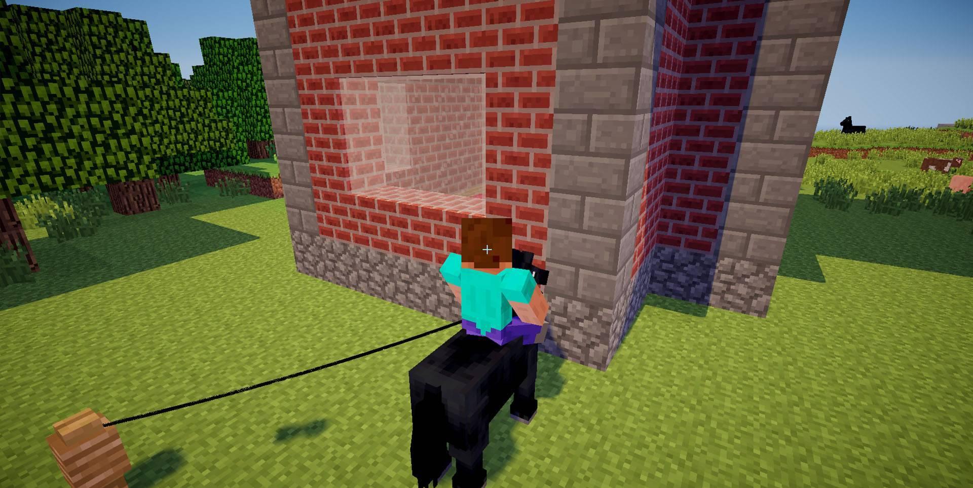 Как приручить дикую лошадь