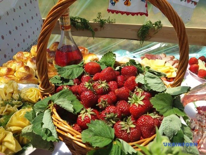 Клубника дарселект: подробная характеристика крупноплодного сорта и особенности выращивания хорошего урожая