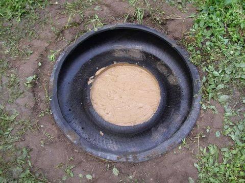 Выращивание огурцов в квартире: пошаговая инструкция от выбора сорта до сбора урожая, можно ли вырастить огурцы в подвале