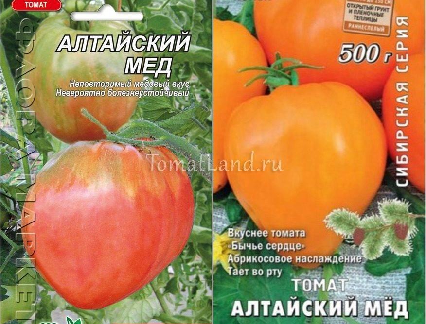 Томат алтайский оранжевый: характеристика и описание сорта, урожайность с фото