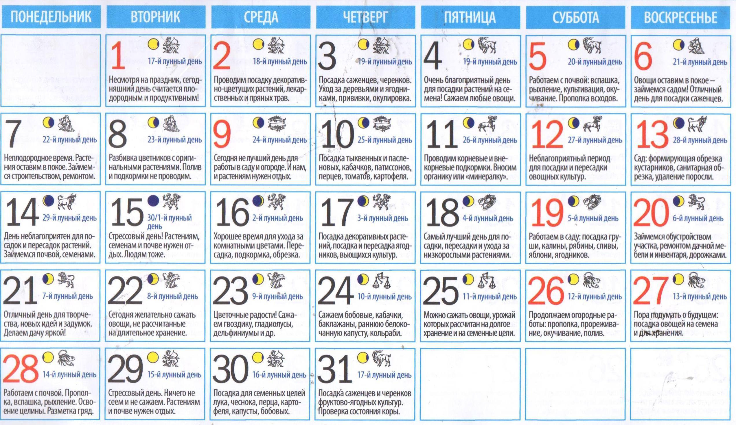Благоприятные дни для посадки в мае 2020 — шпаргалка для огородника!