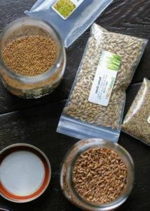 Пшеница как пища для кур. способы прорастить зерно в домашних условиях