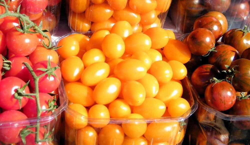 Сорт томата «спрут черри f1»: фото, видео, отзывы, описание, характеристика, урожайность