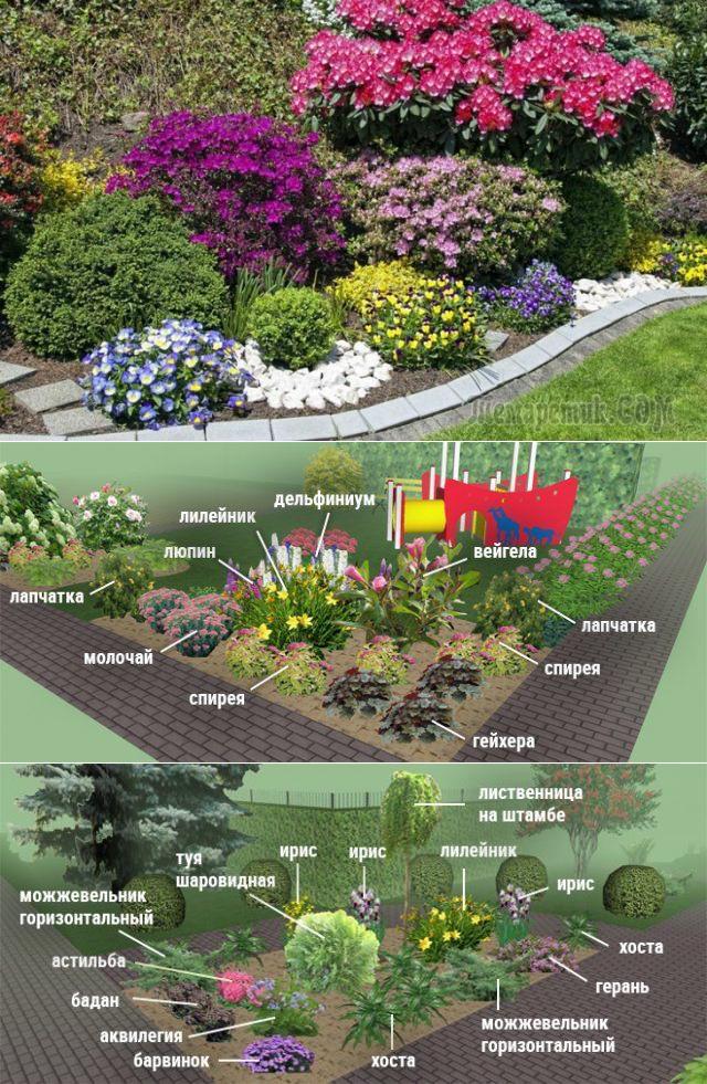 Клумбы и цветники: описание разновидностей, оригинальные идеи создания из подручных материалов (70+ фото & видео) +отзывы