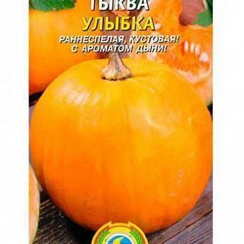 Описание сортов крупноплодной тыквы россиянка, конфетка, крошка, стофунтовая и другие, их выращивание