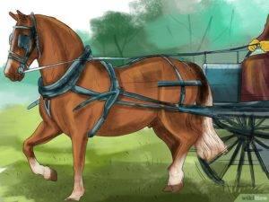 Как своими руками сделать телегу для лошади