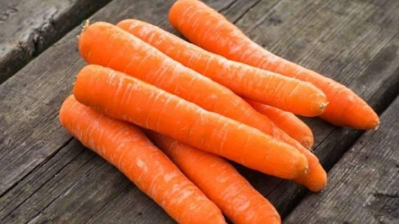Морковь: описание 28 лучших сортов, характеристика (фото & видео) | +отзывы