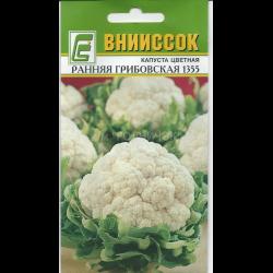 Ранняя капуста грибовская: характеристика, описание и фото сорта
