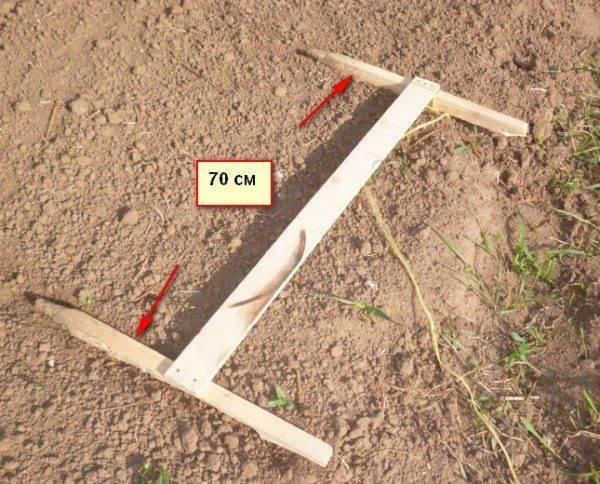 Долой тяжёлый труд: особенности посадки картофеля при помощи мотоблока