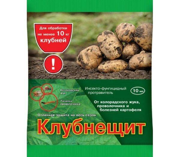 Обработка картофеля от колорадского жука перед посадкой, описание препаратов