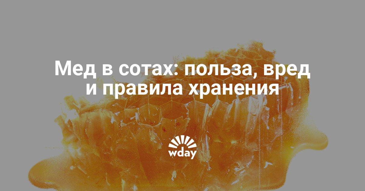 О хранении меда в сотах в домашних условиях, как сохранить соты с медом дома