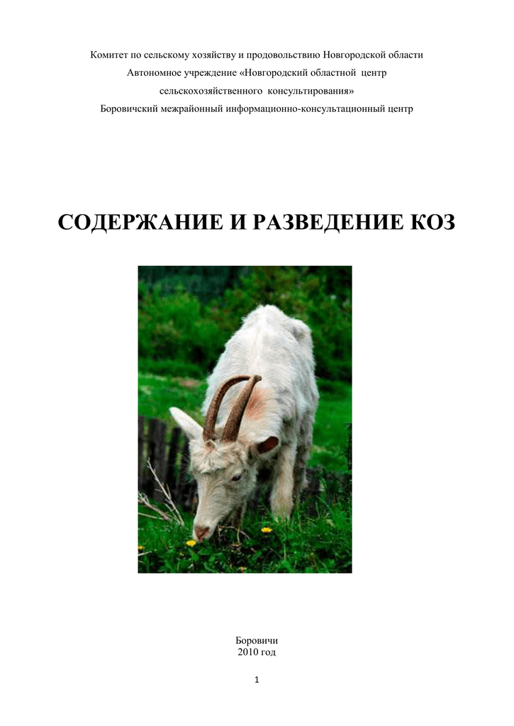 Содержание зааненских коз