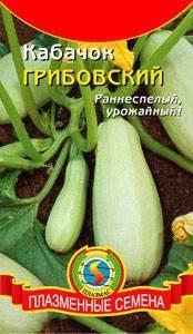 Выращивание кабачка грибовский 37