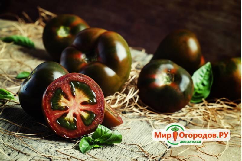 9 самых вкусных и урожайных сортов томатов