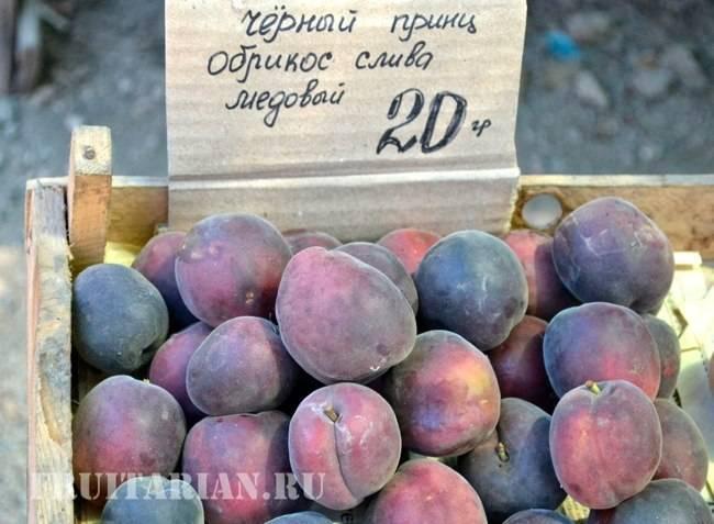 Сложный гибрид или новинка в моем саду) - запись пользователя berezhyuliya (id792125) в сообществе сад, огород в категории кустраники и плодоносные деревья. - babyblog.ru