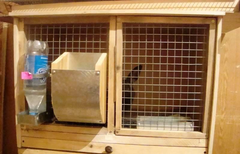 Кормушки для кроликов своими руками (26 фото): как сделать бункерную кормушку по чертежам? размеры моделей, оригинальные идеи изготовления